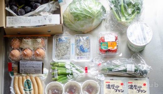食品や野菜やお弁当の通販が安全で便利!中食にもおすすめの宅配サービスを賢く使おう