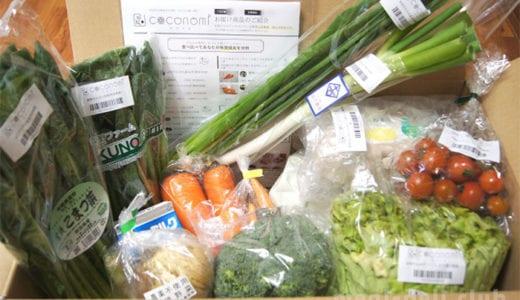 野菜宅配の「ココミノ」を実体験!徹底的にレビューします