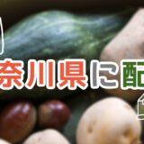 神奈川県で利用できるおすすめ食材宅配サービスランキング