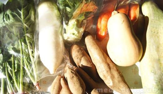 【食べチョク】とれたて野菜を即出荷!どんなサービスか体験してみた